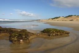 Beach at Nautilus Bay Coastal Nature Reserve